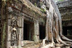 Камбоджа така, як вона є