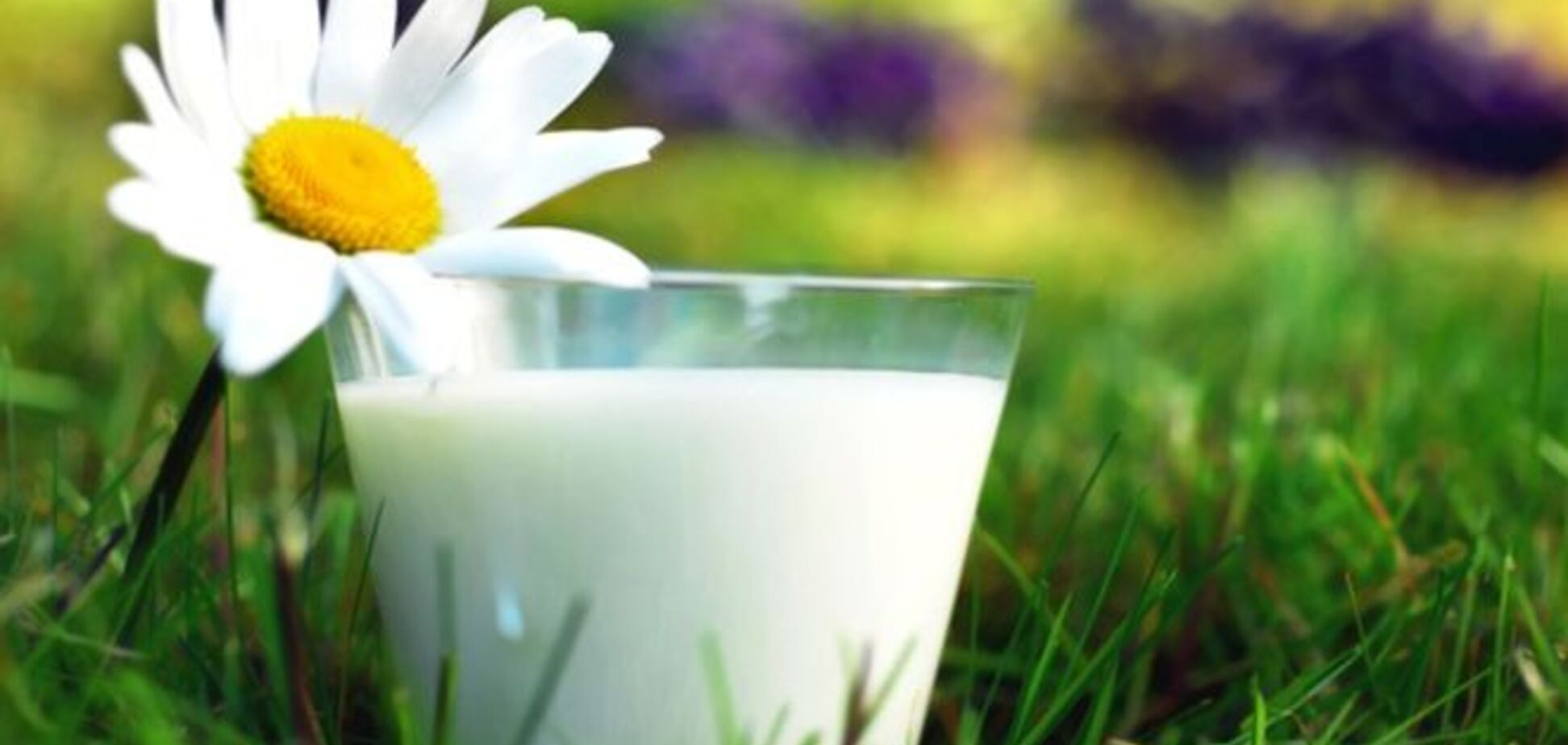 В Україні найдорожче молоко у світі. Але стане ще дорожче
