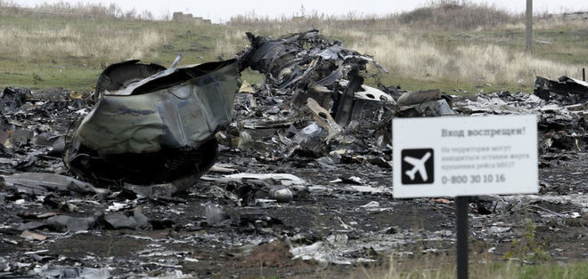 У Росії збирають підписи за створення трибуналу і розслідування аварії 'Boeing'