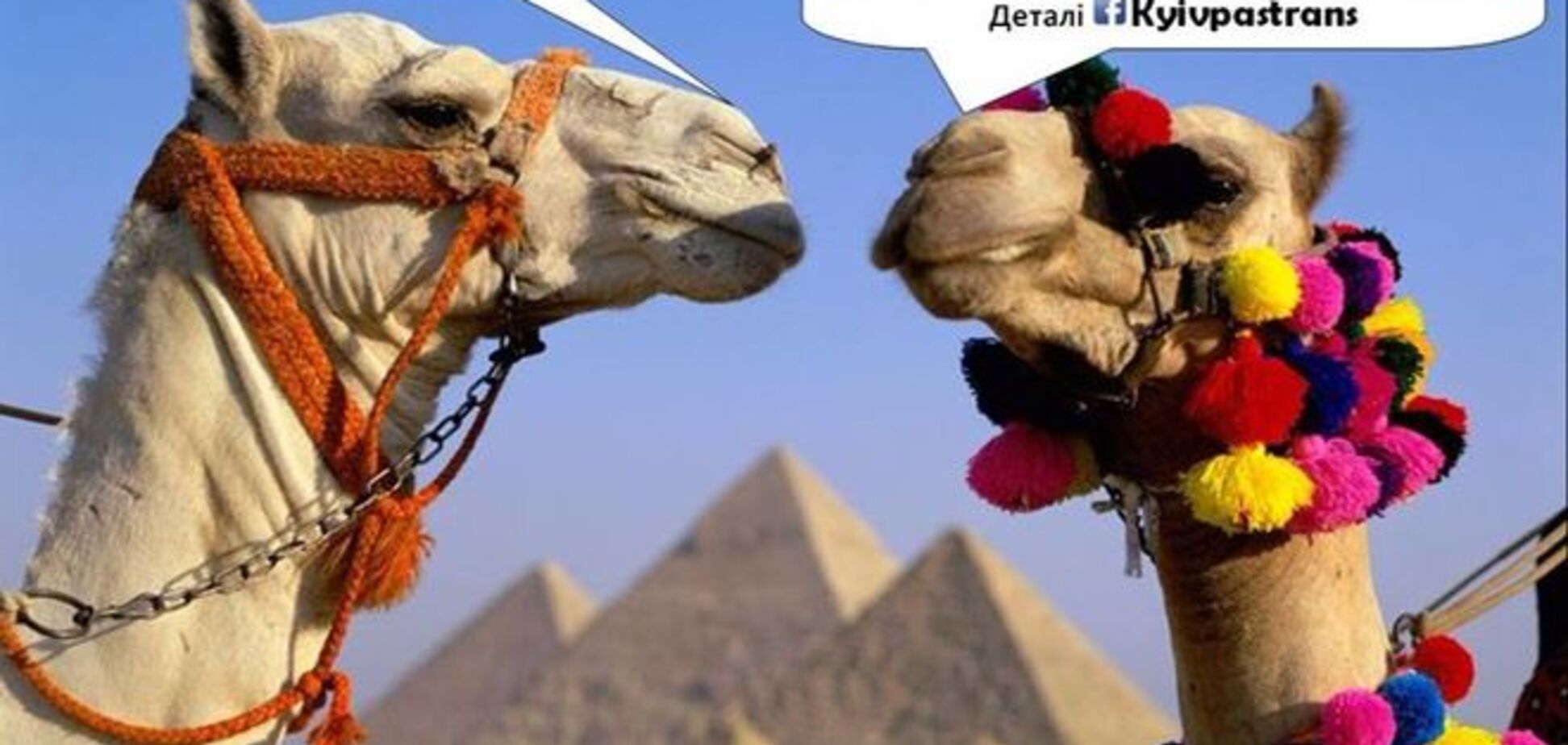 20 кращих працівників 'Київпастрансу' нагородять поїздками до Єгипту