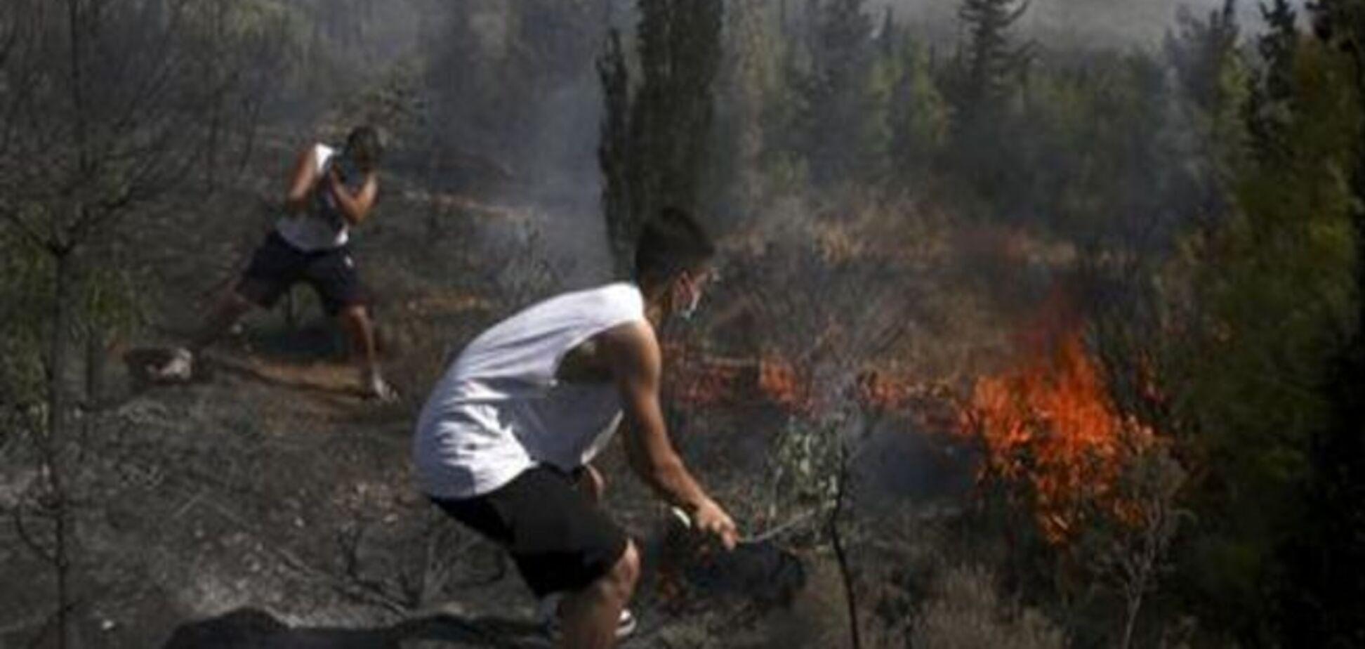 Рятувальникам вдалося приборкати дві великі лісові пожежі поблизу Афін