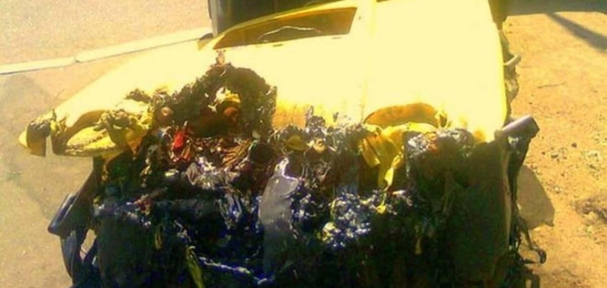 'Мы выжили, а он нет': жара в Киеве уничтожила мусорный бак: фотофакт