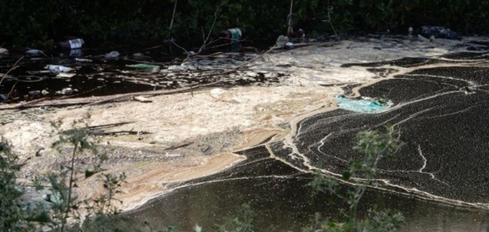 Эксперты оценят масштабы экологической катастрофы в Ладыжине