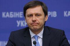 Екс-міністр Шевченко 'подарував' Онищенку 50 тисяч гектарів родовищ бурштину