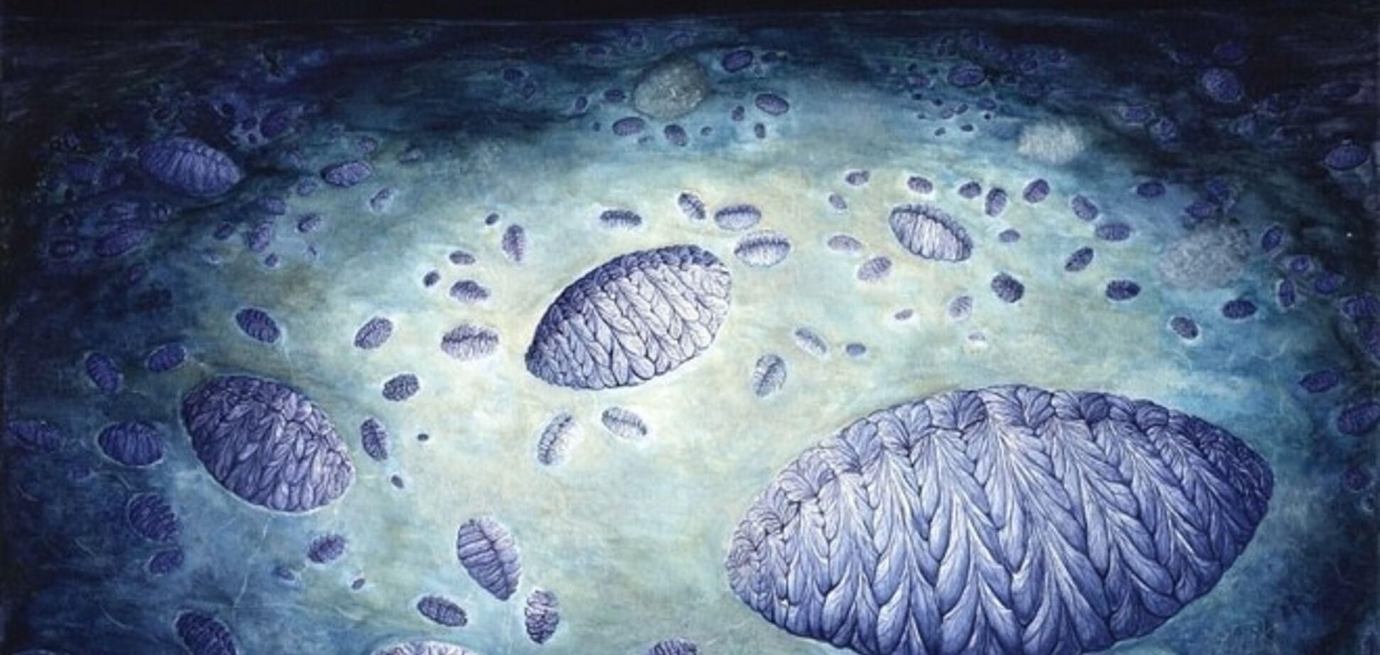 Ученые нашли следы древнейшего секса на Земле: фотофакт