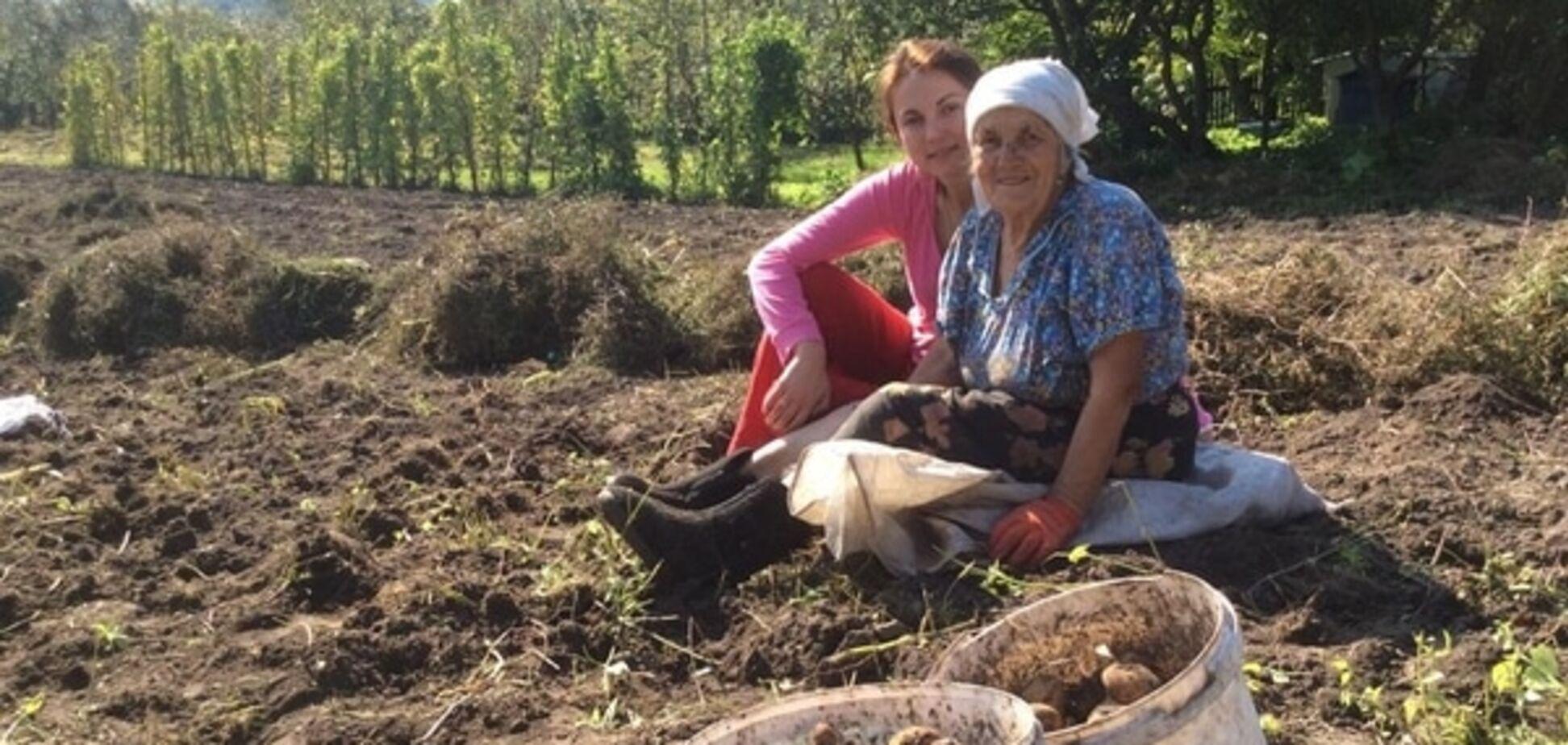 Политики пошли в огород: картошка Гопко и капуста Королевской