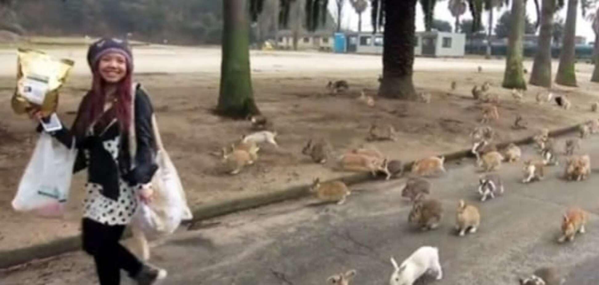 Интернет покорил 'остров кроликов': опубликовано видео