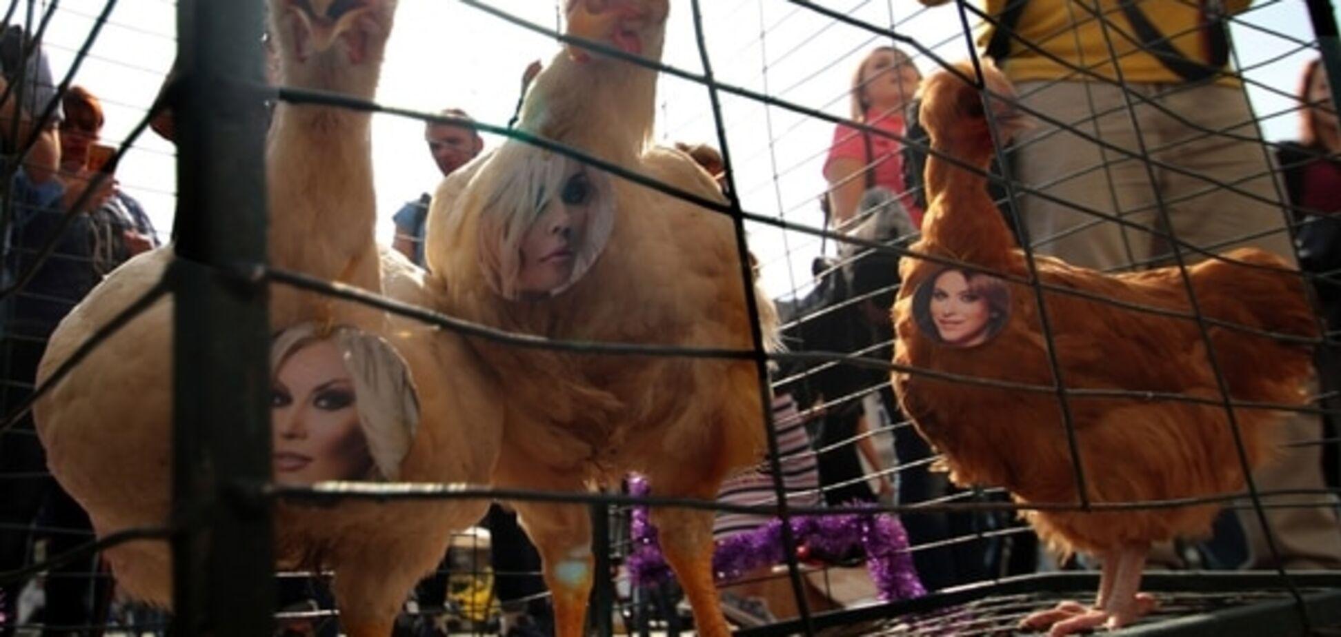 Во Львове 'куриц' Лорак, Повалий и Билык сводили в Оперный театр: опубликованы фото
