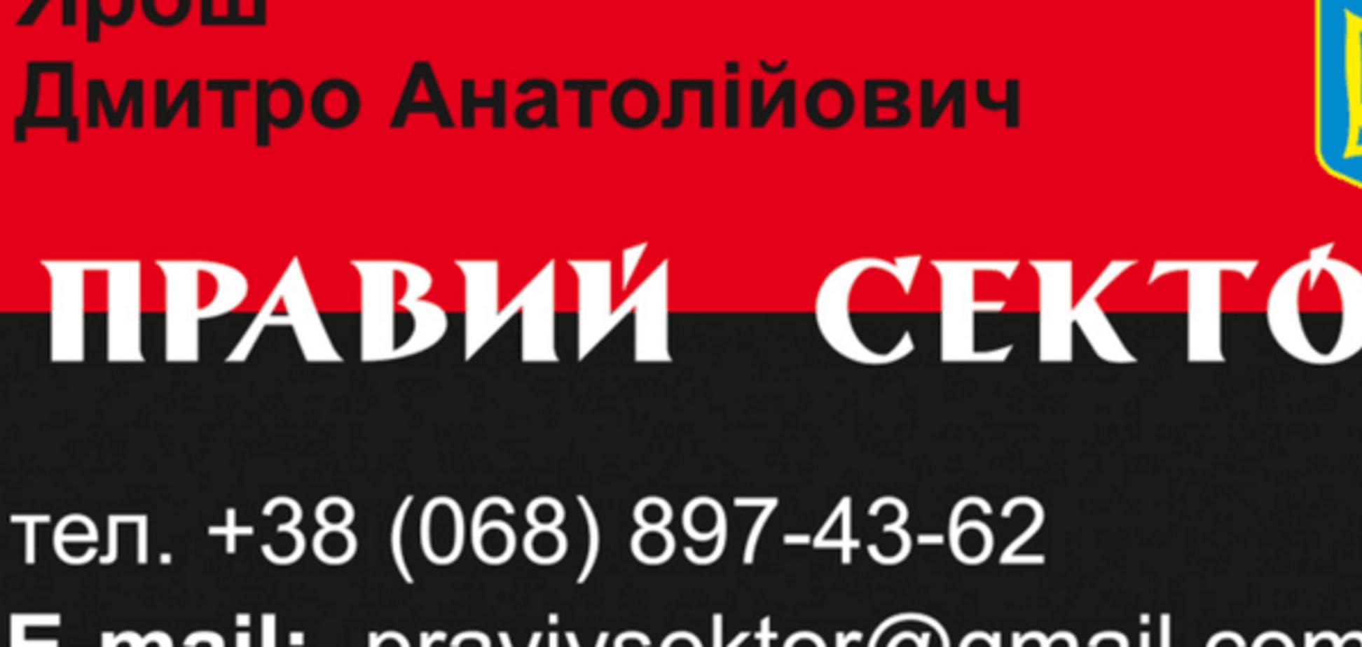 Чорний без червоного: в мережі показали кота Яроша. Фотофакт