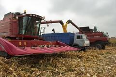Мировой финансовый кризис ударит по украинским аграриям: кто пострадает первым