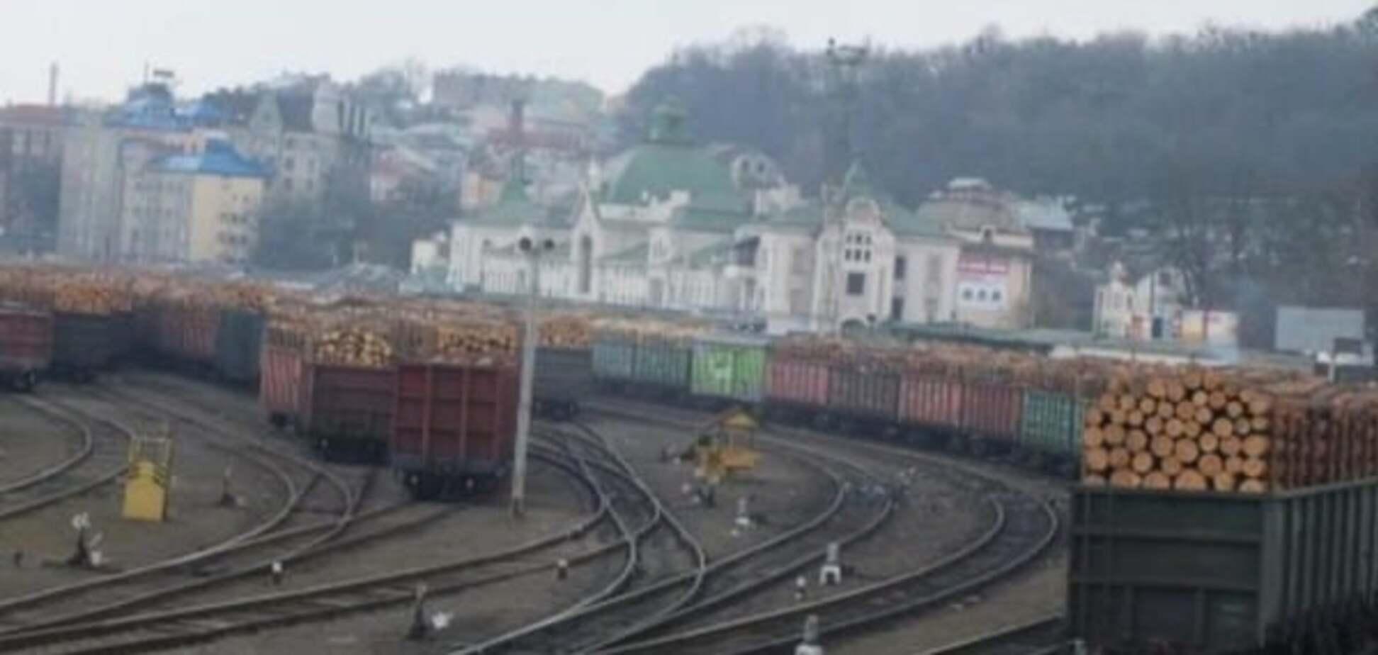 На вотчине Яценюка незаконно вырубают леса: Буковина - на грани экологической катастрофы