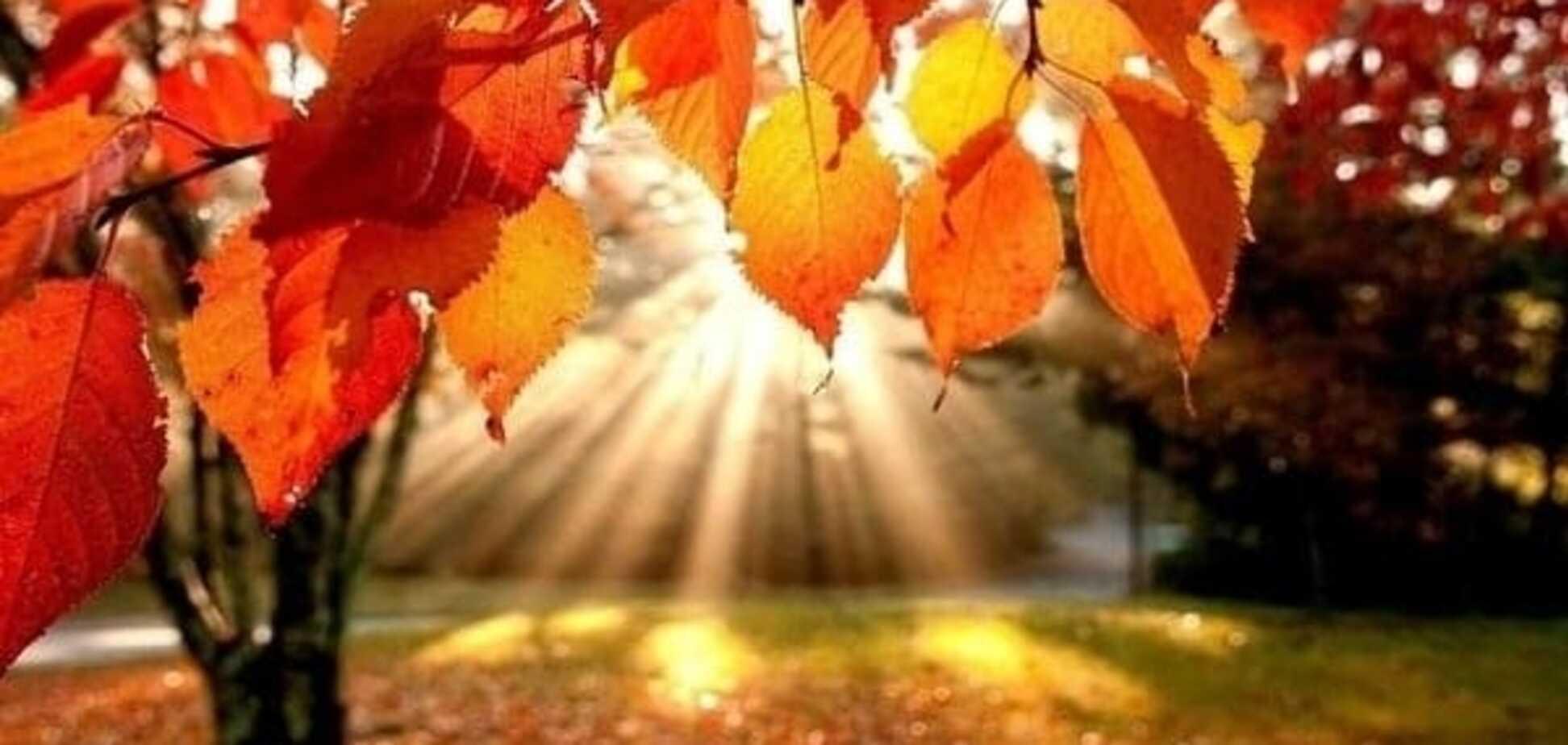Осенний гороскоп: каким будет остаток осени для разных знаков зодиака