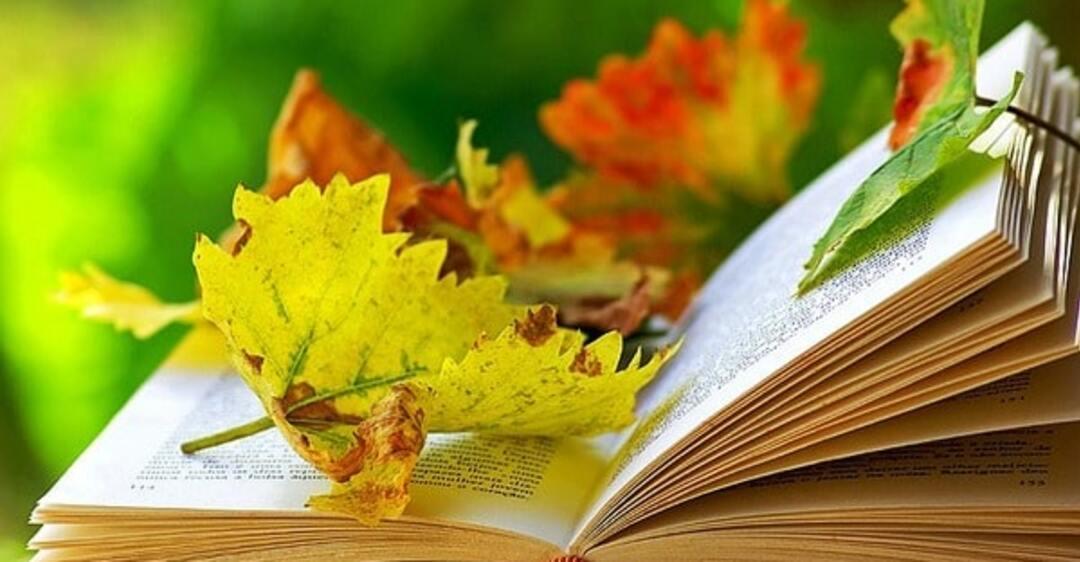 Открытка с днем учителя осень