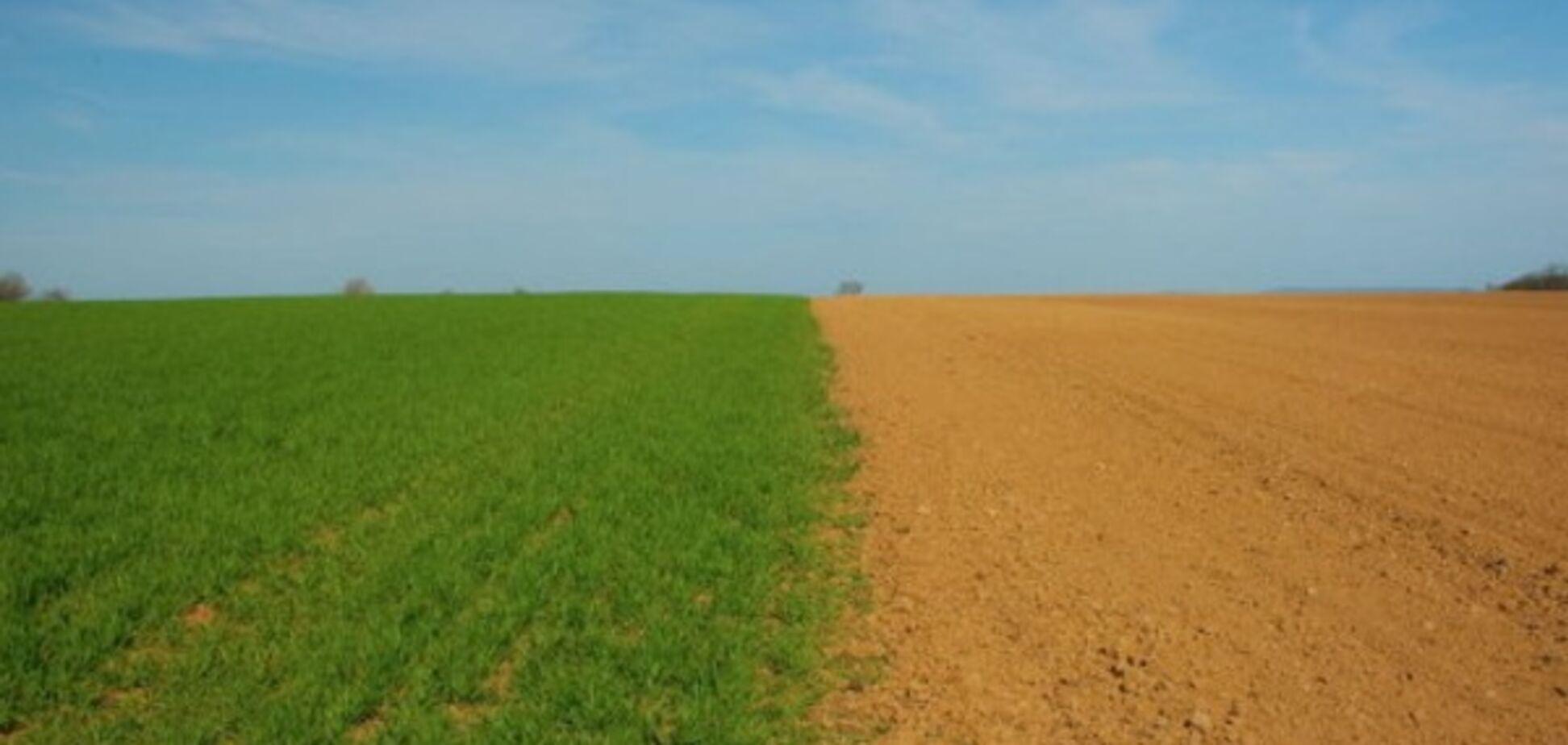 Мораторій на продаж землі