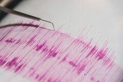 Японию всколыхнуло землетрясение