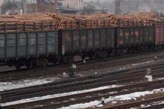 Депутаты заблокировали вывоз кругляка из Украины