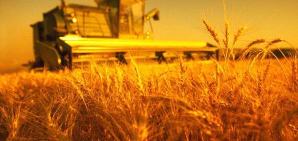 Мазур: аграрний сектор врятують нові технології та об'єднання мешканців сіл