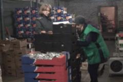 Безумие! В заполярном Мурманске сожгли 200 кг яблок и томатов: видеофакт