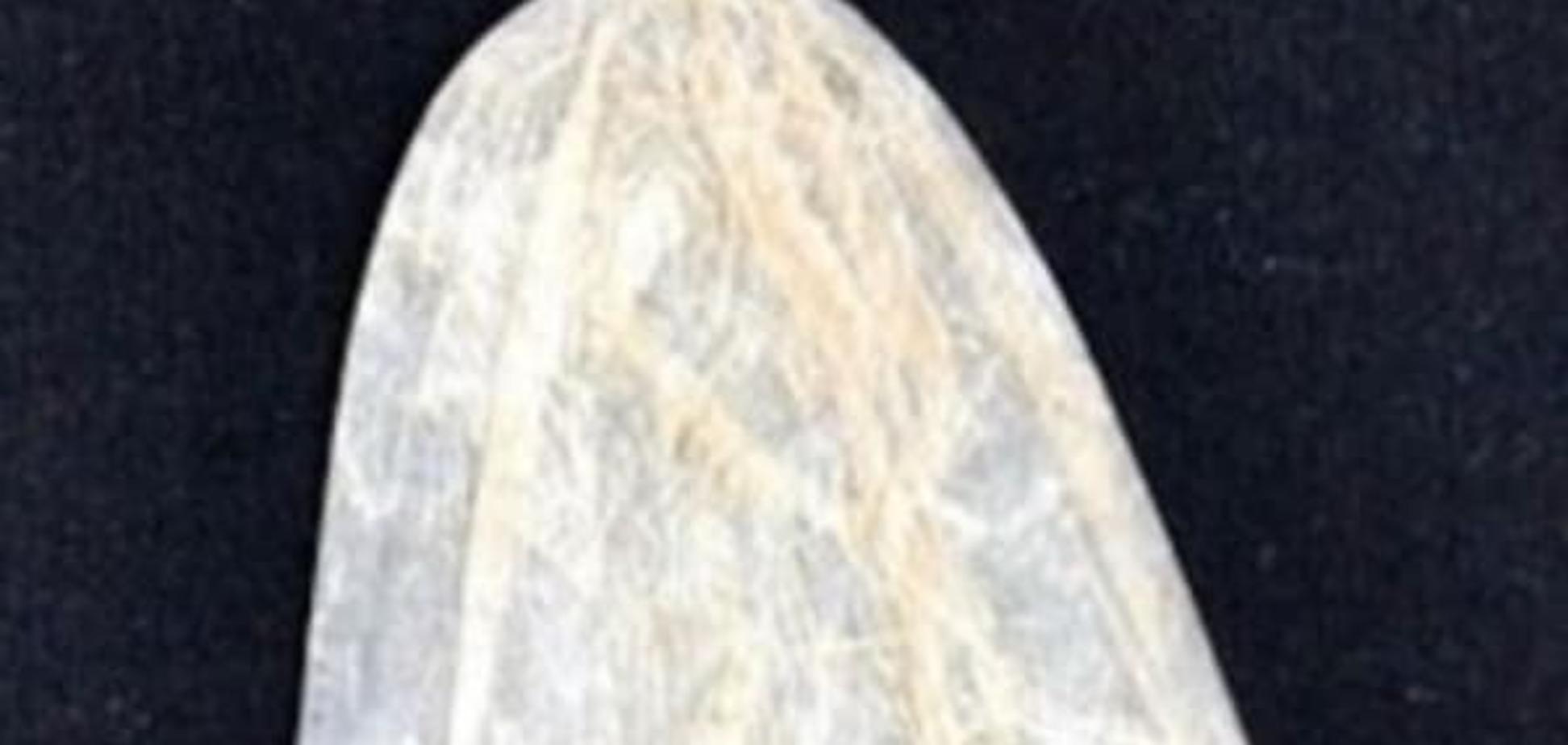 Чудеса: 200-річний презерватив продали за неймовірну ціну. Фотофакт