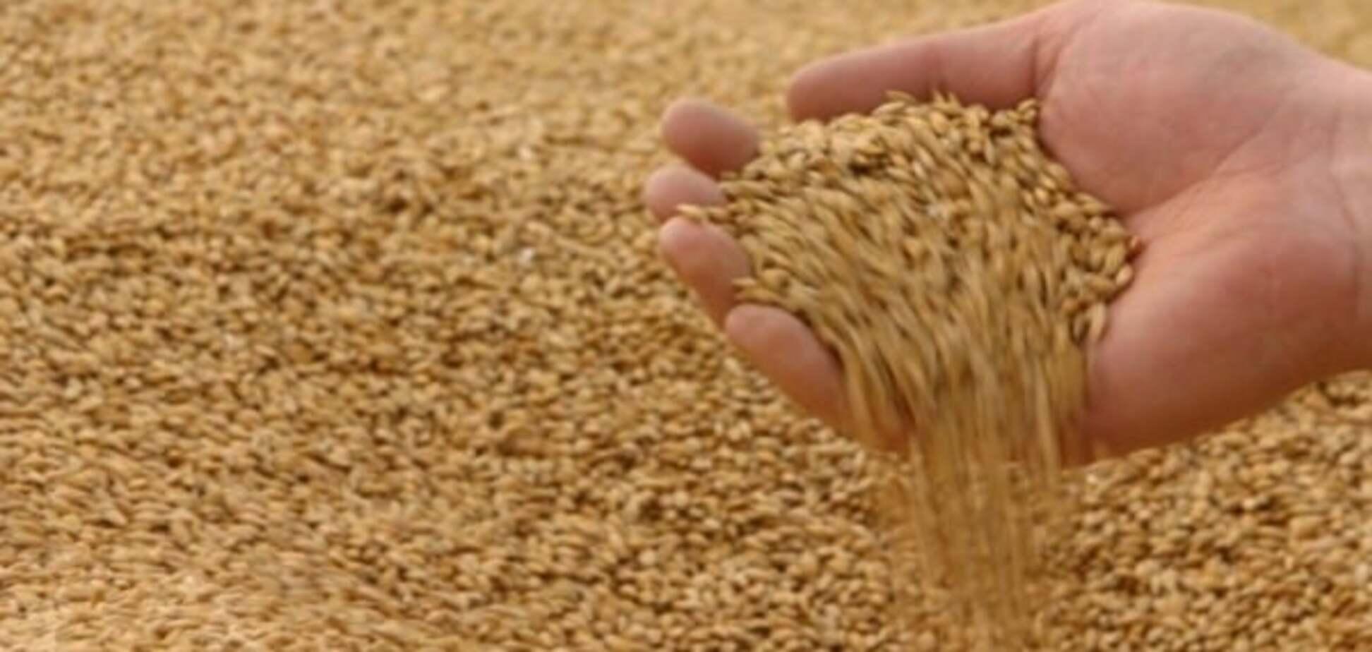 СБУ запобігла аграрній афері на 116 млн гривень