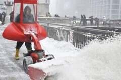 Киевские тропики: сколько город сэкономил на теплой погоде
