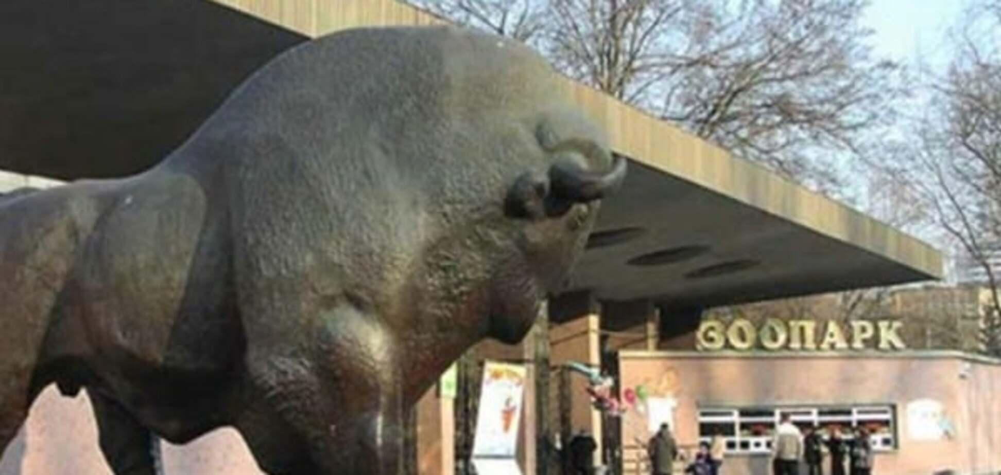 В киевский зоопарк привезут новых животных