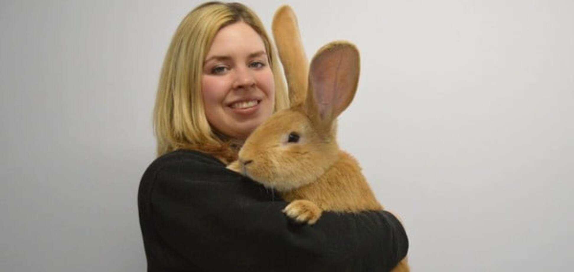 В Шотландии кролик вырос размером с собаку