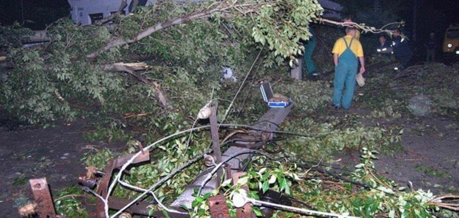 В Україні через буревій і вітер 41 населений пункт залишився без світла