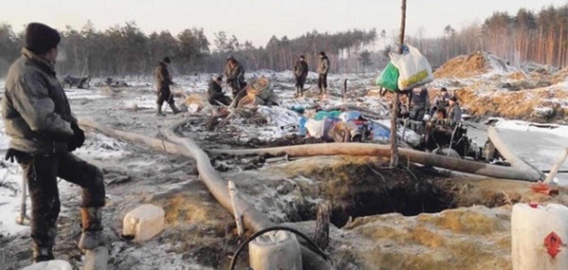 Бандитський видобуток бурштину: еколог Борейко заявив про знищення лісів та водойм