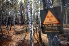 Період напіврозпаду закінчився: експерт заявила, що частина Чорнобильської зони втрачена назавжди