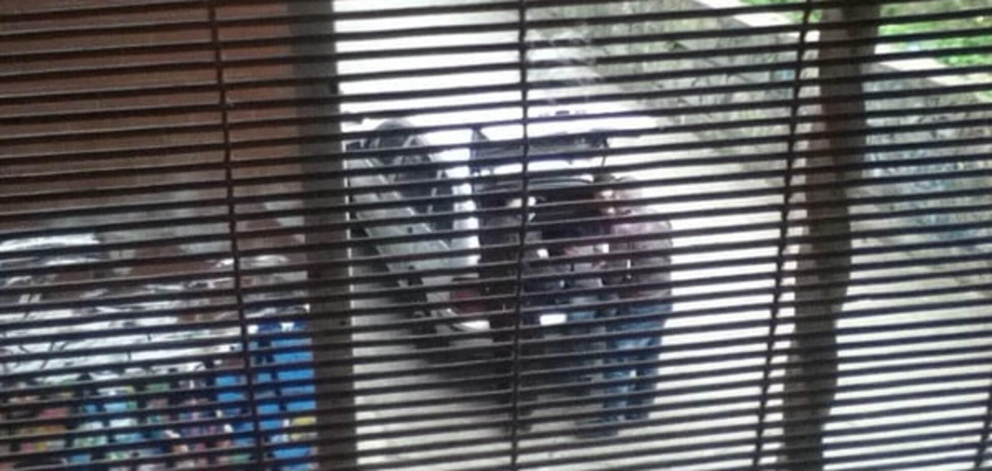 Пытались поджечь: в Киеве нашли машину убийцы хозяина Kiev Sport Club. Опубликованы фото