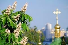 Як відзначатимуть День Києва: цікаві заходи