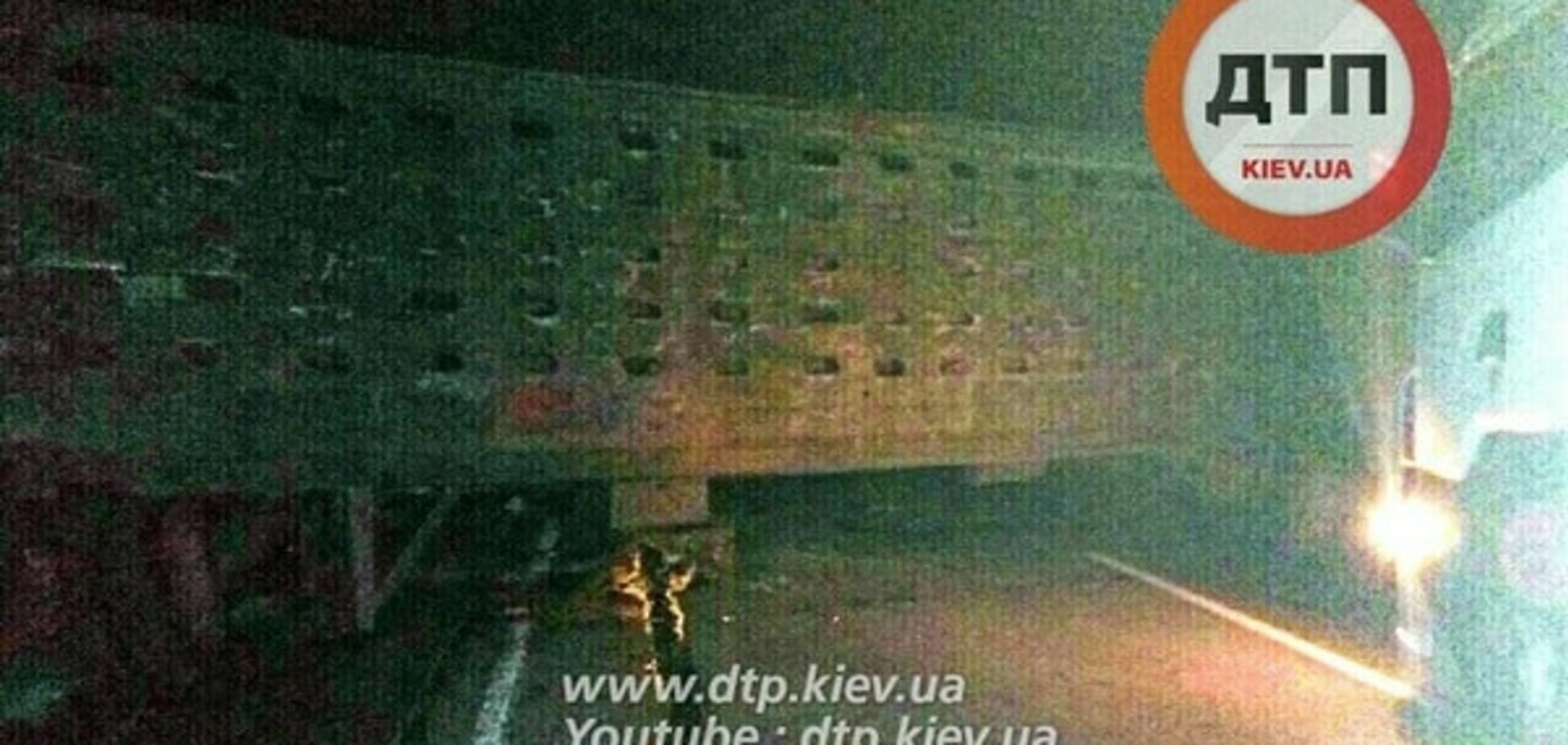 Под Киевом ВАЗ на скорости въехал в скотовоз: есть жертвы