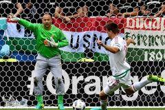 Євро-2016. Футболіст збірної Угорщини встановив два історичні рекорди