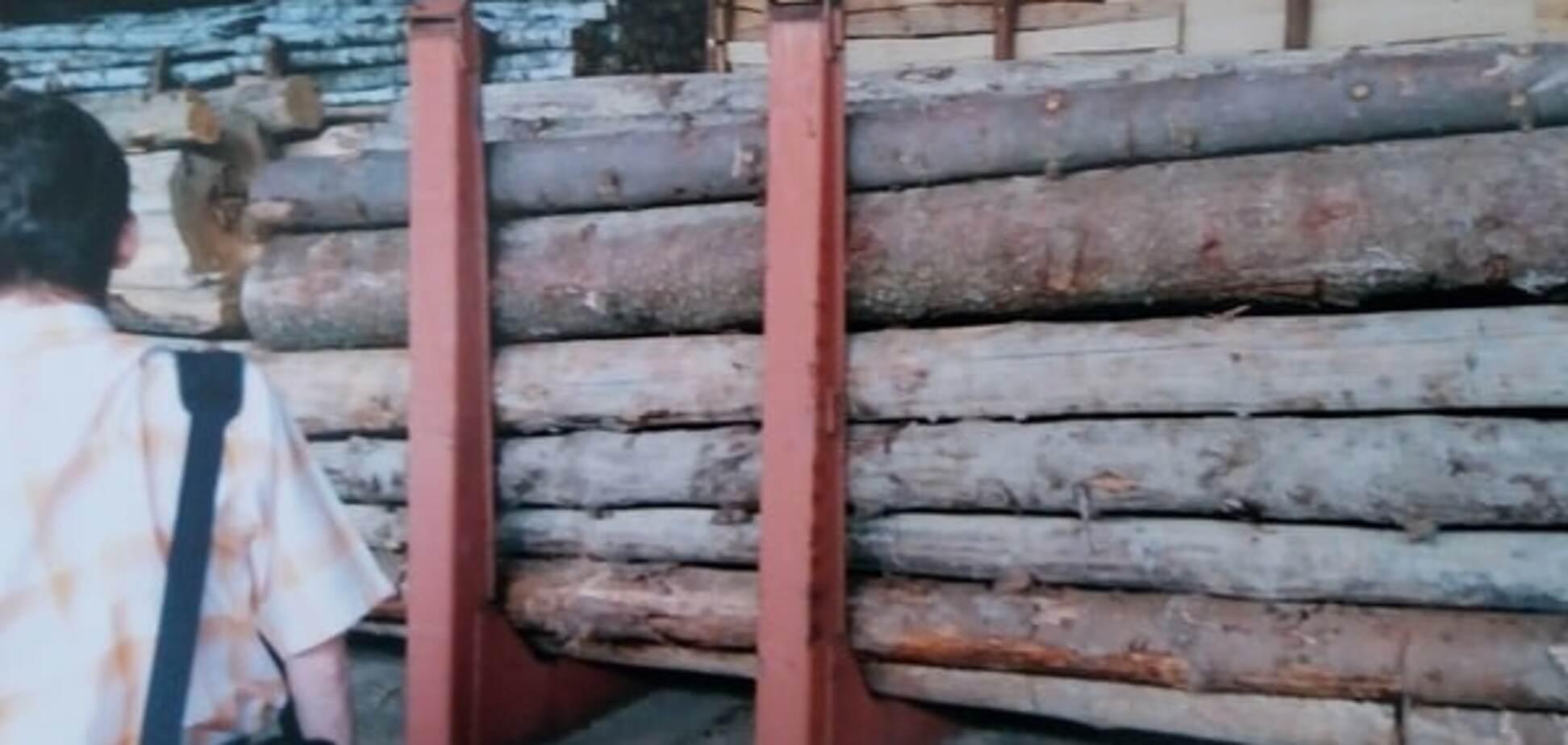 Задержанная на Закарпатье древесина