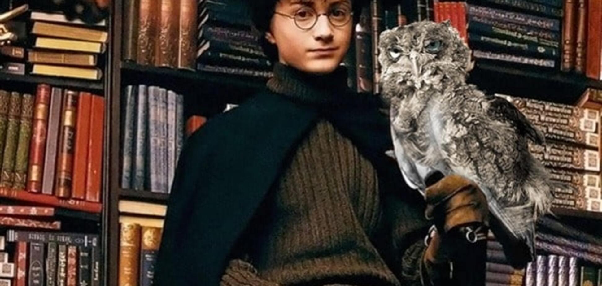 Гарри Поттер с совой
