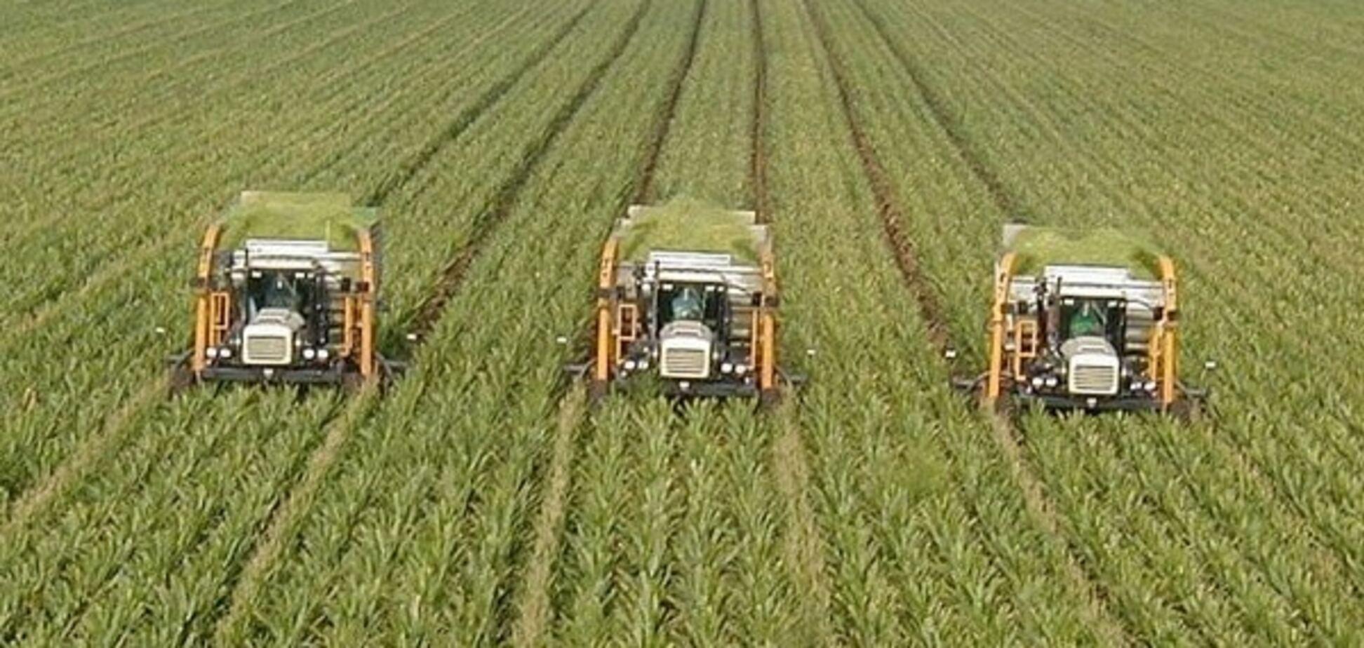 Поле битвы: имущество агрохолдинга 'Мрия' остается яблоком раздора