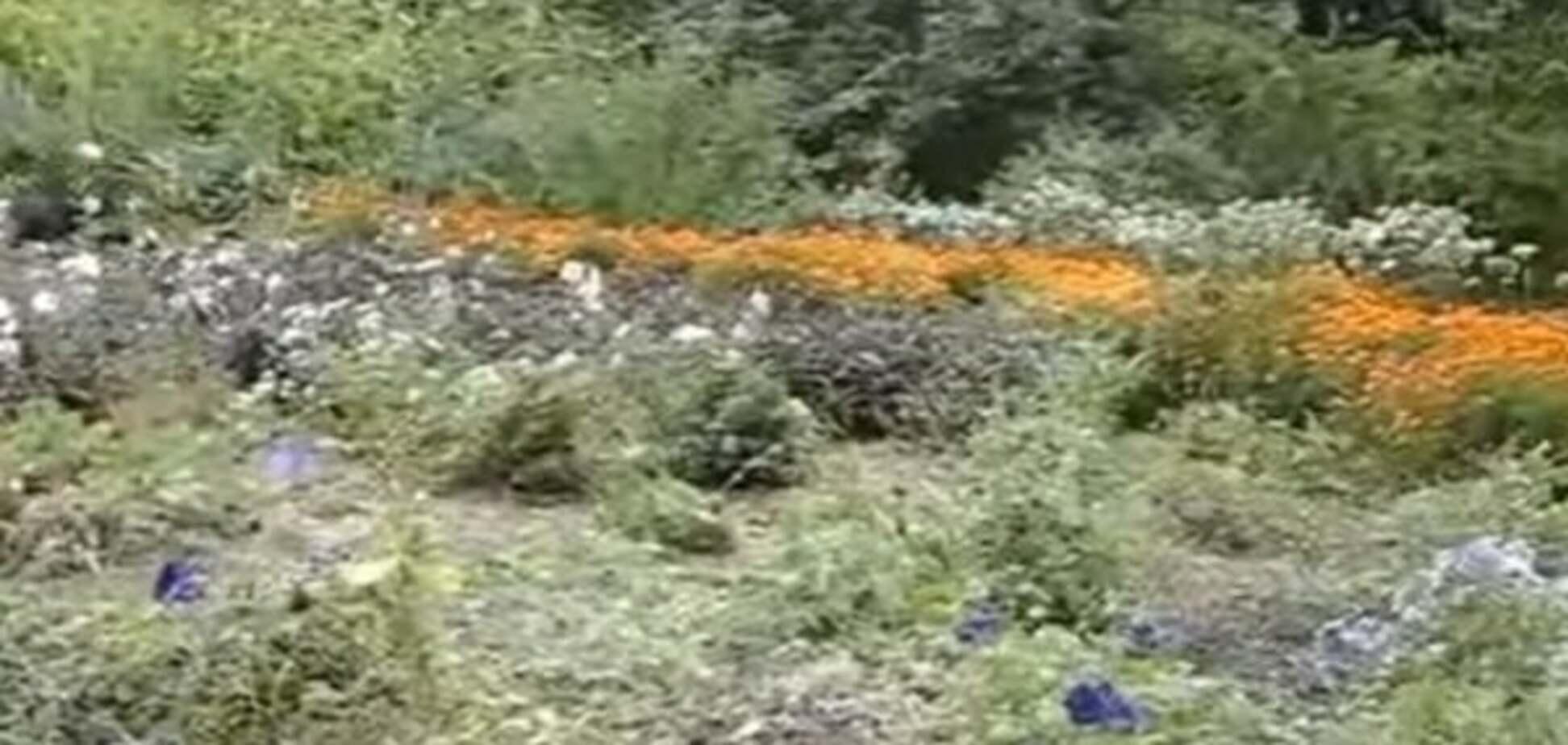 У київському ботсаді відкрили 'Сад ароматів'
