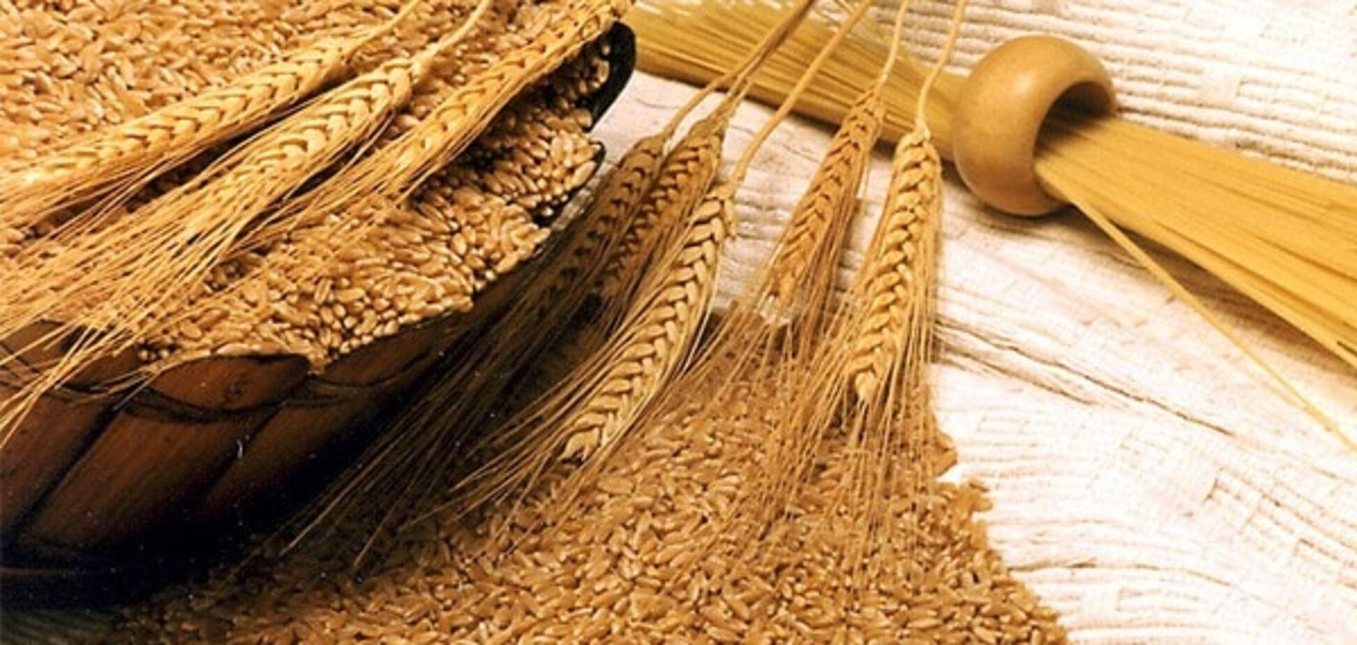 Урожай пшеницы