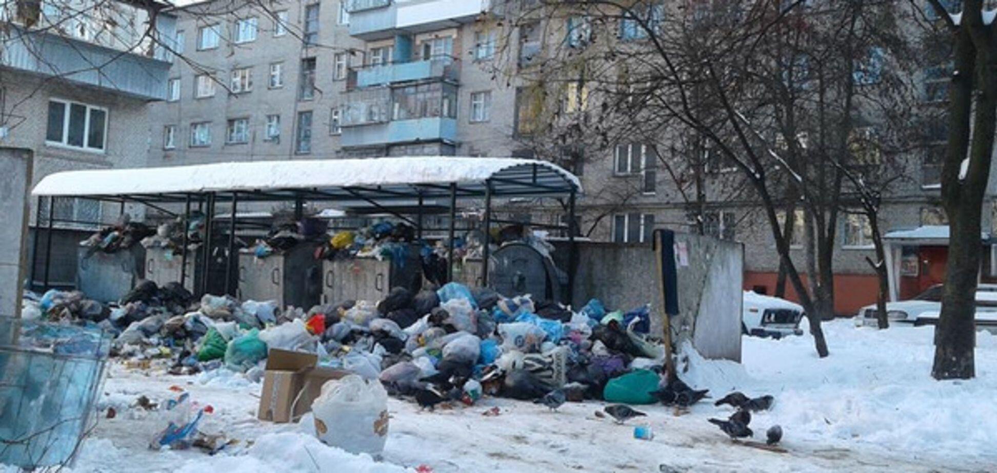 Львів сміття