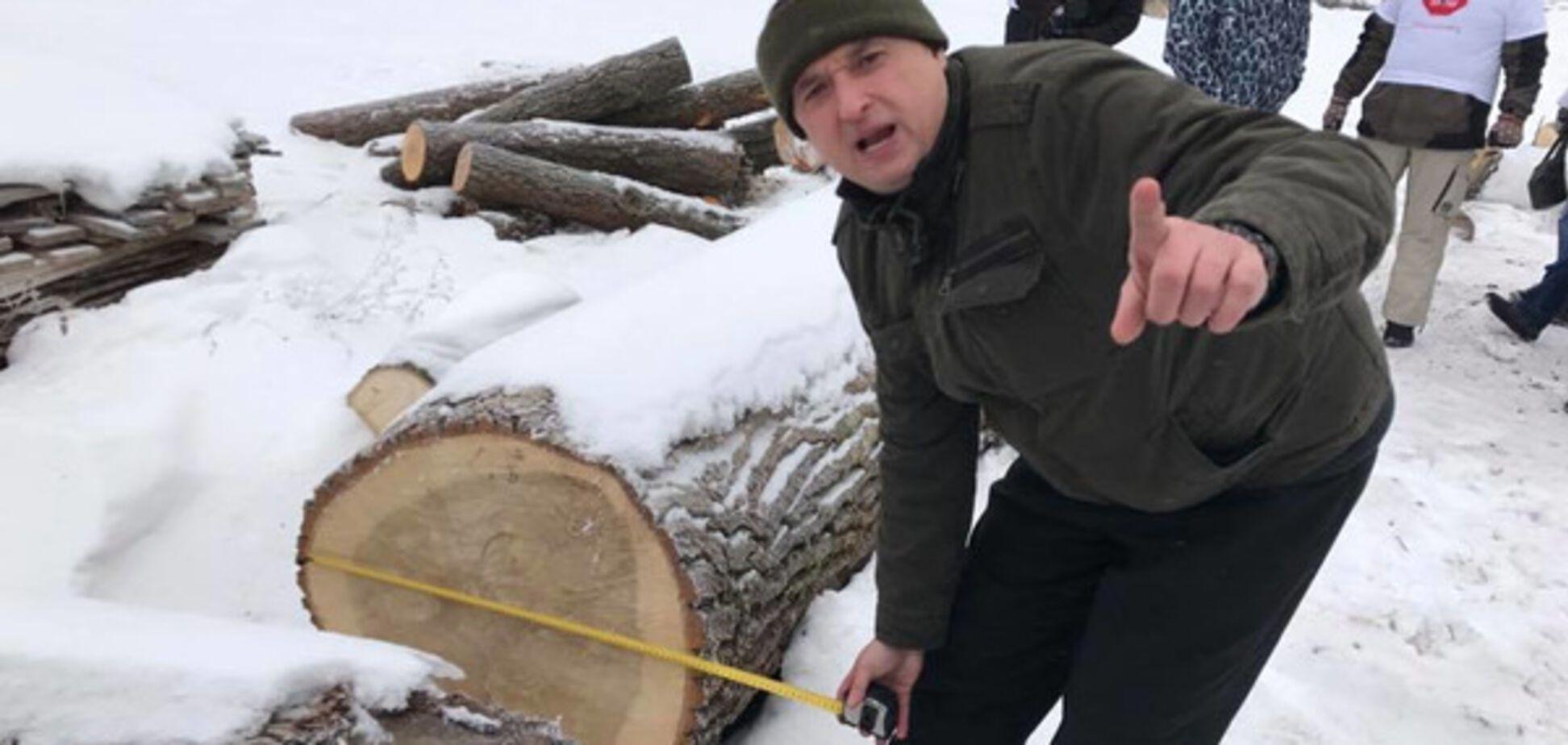 уничтожение леса Украина