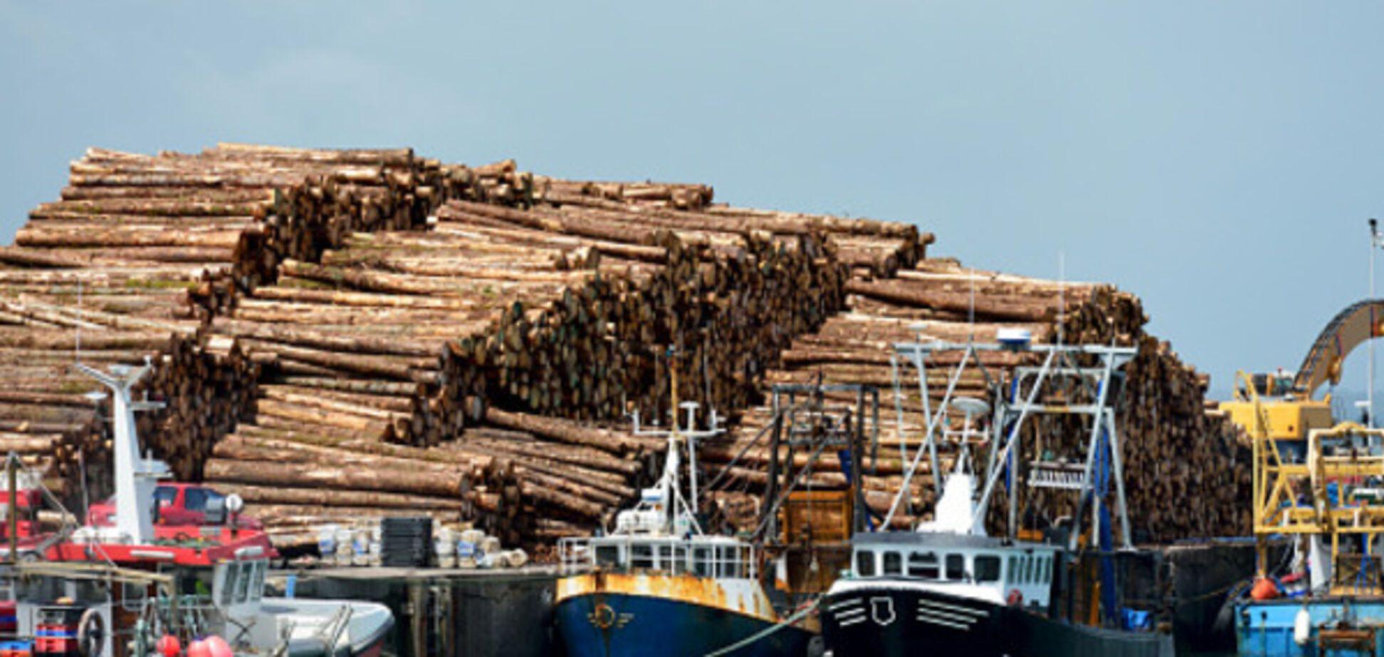 Экспорт леса