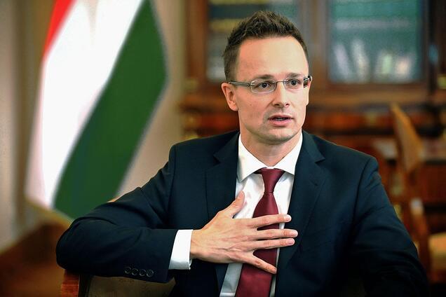 Языковой скандал: Венгрия резко отреагировала после переговоров с Климкиным