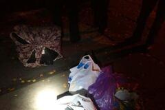 Пограбування дитсадка в Києві