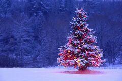 Идеальная елка как несуществующий идеал
