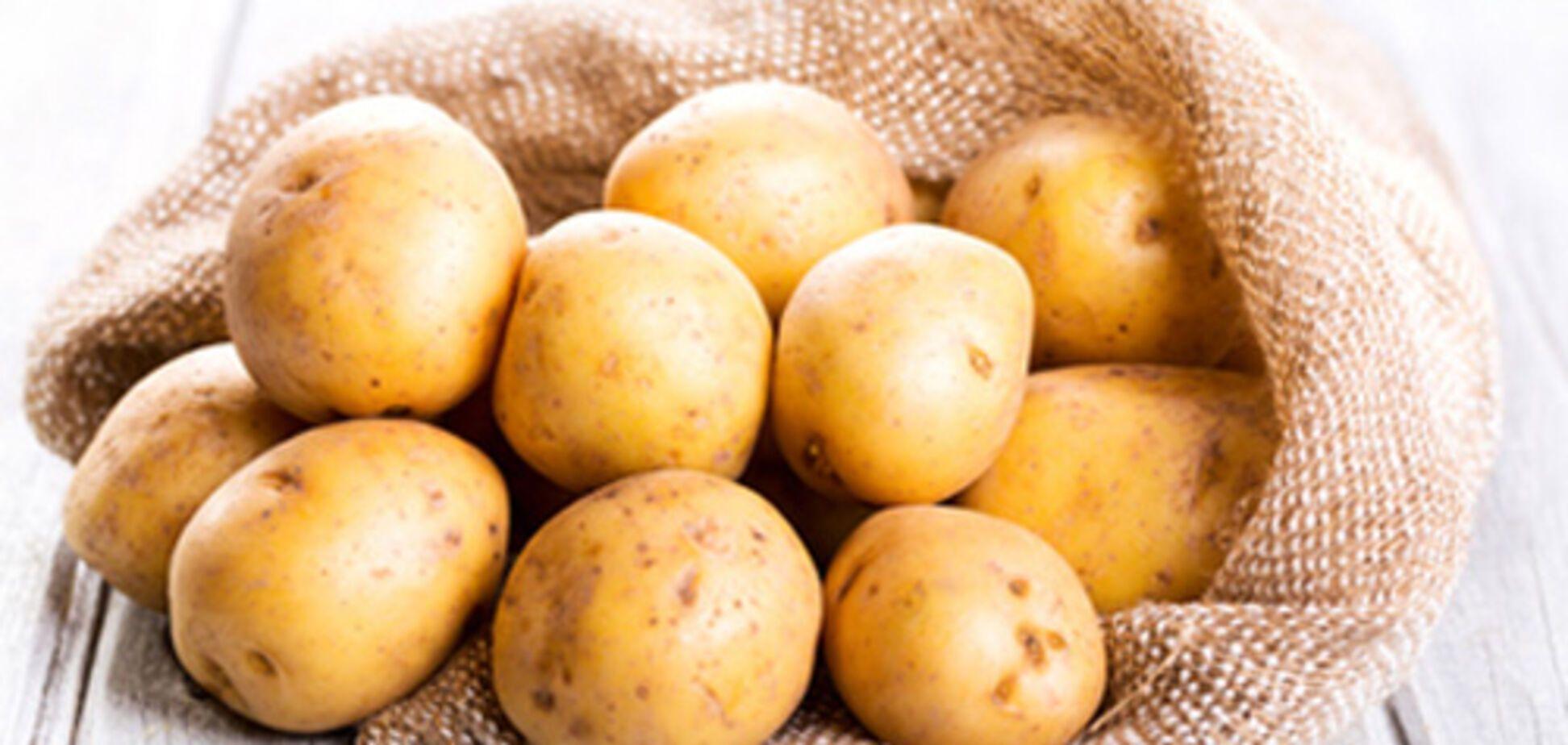 Вспыхнул скандал из-за картошки для бойцов АТО