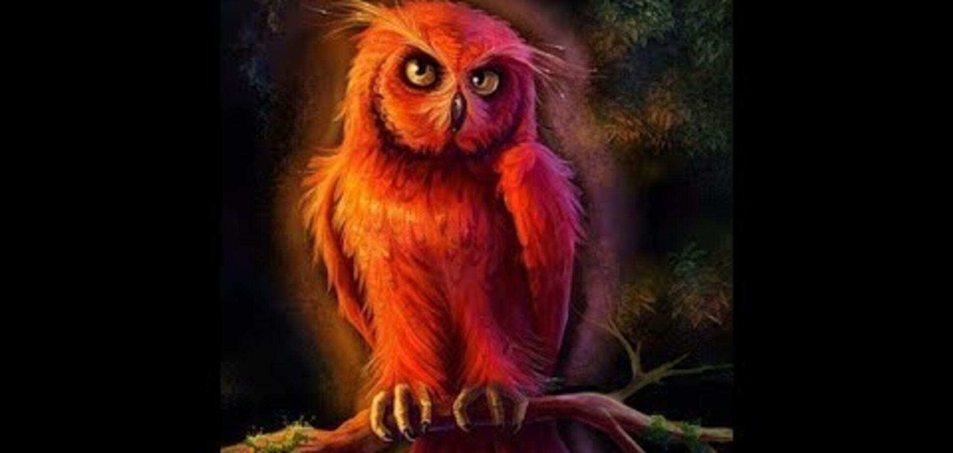 'Червона сова': психолог дала поради, як вивести дитину зі смертельної гри