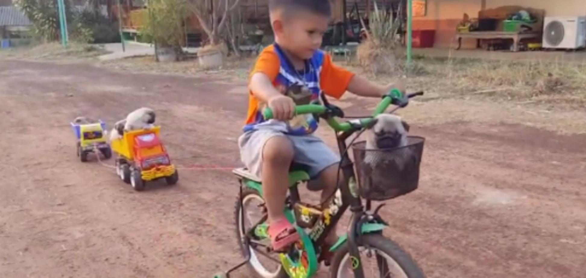 Поезд для щенка: видео с оригинальной идеей ребенка покорило сеть