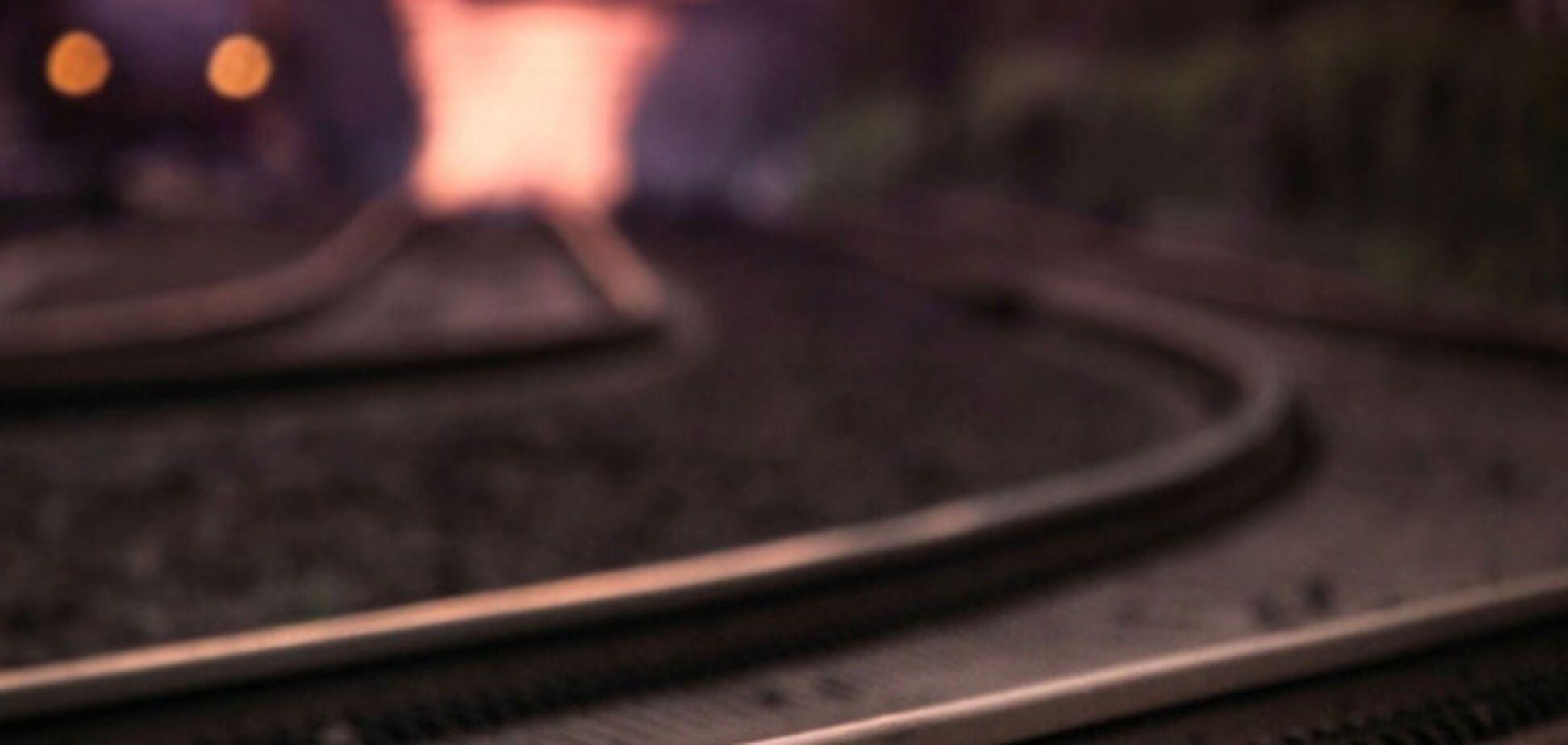 Из-за взрывоопасных предметов в области пришлось останавливать поезда