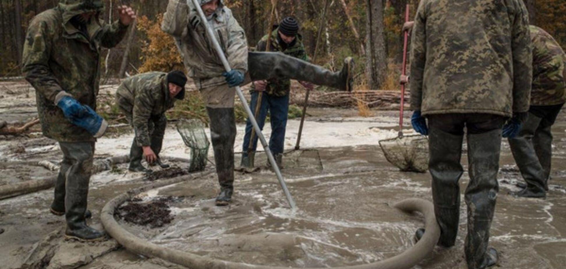 Нелегальная добыча янтаря в Украине